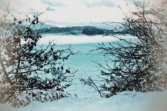 winter landscape [explore 10.02.2017] (camerito) Tags: winter landscape carinthia kärnten austria österreich snow wintery lanschaft branches zweige white weis camerito nikon1 j4