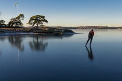 Baggensnäs (David Thyberg) Tags: 2017 baggensfjärden ice nature saltsjöbaden stockholm stockholmarchipelago sverige sweden winter långfärdsskridsko skate skating