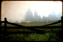 The Past Is The Influence Of The Present (Mark ~ JerseyStyle Photography) Tags: morning trees grass fog truck fence canon20d frame mercercounty woodfence eastwindsornj route130 markknj