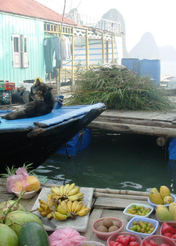 Sur l'eau-Ha Long (3)
