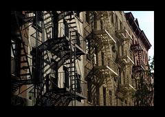NYC XXIII
