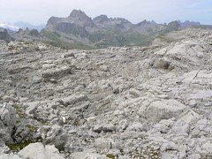 Lckistock1 157 (Shepherd & his Hot Dogs) Tags: panorama dog mountain mountains schweiz switzerland hiking berge climbing hund alpine summit alpen karst wandern bergwandern gipfel bergtour doline glattalp dogs karrenfeld pyrenische berghunde pyrenean lckistock mrenspitz ruosalp