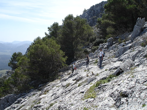 Parque Natural de Grazalema