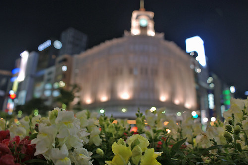Ginza Flower Crossing