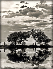 fishing (linh.ngan) Tags: sky cloud reflection tree home nature landscape fishing afternoon westlake hanoi