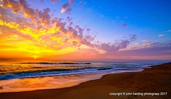 Ode To Yellow: Sunrise at Southern Shores (T i s d a l e) Tags: tisdale odetoyellow sunrise dawn coast outerbanks beach summer september 2016 easternnc