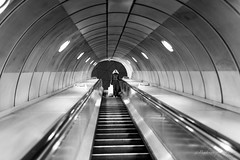 L'escalateur - Londres (Bouhsina Photography) Tags: monochrome perspective rue street art 35mm sigma personne station 2017 angleterre bw 5diii canon bouhsinaphotography bouhsina noiretblanc blanc noir blackandwhite white black nuit underground london londres metro tube