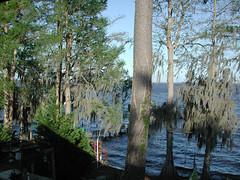 lake story 010 (shankargallery) Tags: landscapes nikon piers northcarolina lakeside spanishmoss lakescapes lakewaccamaw shankargallery richardlazzara clustershotcom