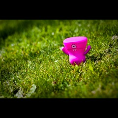 New Species Spotted : Wedgehead !! (Pikaglace) Tags: pink green grass rose canon toy toys 50mm verte beforeafter herbe uglydolls 2010 uglies 450d