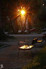Nada me ocultara (Urugallu) Tags: parque espaa luz sol canon spain flickr banco alicante reflejos elche ilicitano levante comunitatvalencia 50d comunidaddevalencia urugallu oltusfotos mygearandme