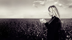 (cs.foto (simplybloomphotography)) Tags: bw field clouds vintage cotton duotone cinematic cottonfield moviestill csfoto