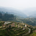 terraces (Zhaoxing village somewhere in the mist)