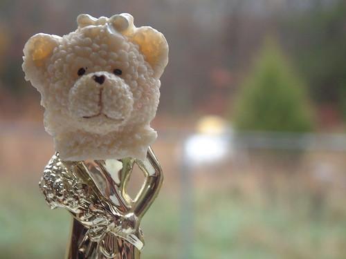 Beauty Pageant Bear Head
