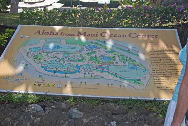 Maui 94