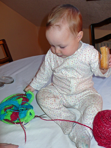 Daisy checking out the knit in progress