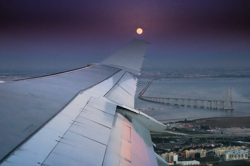 The moon, balanced on a wing
