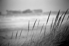 Winter Dune (peterkelly) Tags: winter bw snow film ice beach grass coast sand shoreline greatlakes shore coastline lakehuron grandbend southcottpines