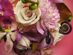 pretty in pink (morganiscool) Tags: pink flowers wedding bride orchids newhampshire nh florist bouquet fiddleheads bridalbouquet valleyflowercompany