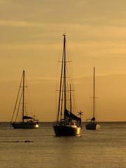 IMG_0378 (Kenzoka) Tags: ocean sunset vacation tree beach island bay boat ship coconut yacht martinique palm caribbean