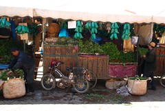 Bags of mint for sale (juliaclairejackson) Tags: green leather retail shopping colours market herbs vibrant mint bikes stall morroco marrakech souk marrakesh bazaar souks herb moroccan alleys cubicles hassle sellers alleyways tiring shopkeepers bartering nikond80