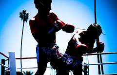 2413504965 fd20ea2ffd m Muay Thai and Kickboxing