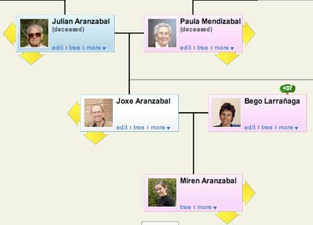 Gure familia zuhaitza, Geni aplikazioan