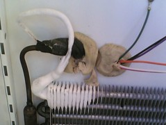 Inefficient Refrigerator