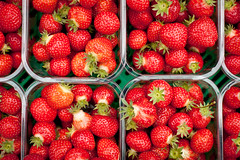 Yummy trays (Denis O'Donovan) Tags: ireland fruit strawberry farm strawberries photowalk ie wexford enniscorthy photowalkie borovalley
