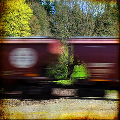 in a fraction of a second (1crzqbn) Tags: trees sunlight motion blur santafe color nature train square oak shadows quote tracks textures 7d handheld 19 henricartierbresson hcs cityart simplybeautiful vividimagination artdigital idream shock