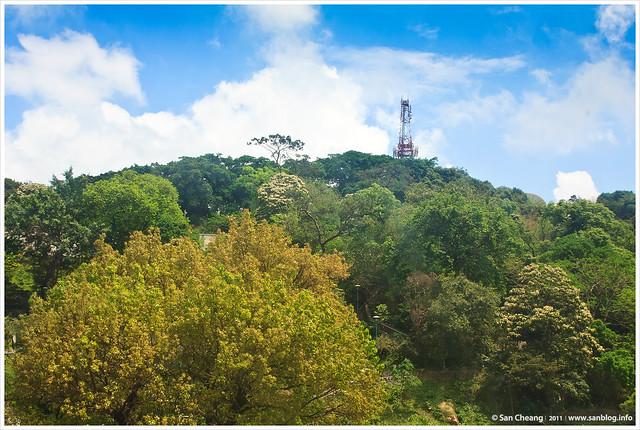 登東望洋山看燈塔