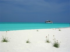 White & Blue Nature - Maldive Islands (DiFo&Natura) Tags: blue sea sun white blanco beach azul sand mare blu 2006 april aprile sole azzurro bianco spiaggia sabbia maldive yourfavorites naturalmente blueribbonwinner instantfave 25faves diamondclassphotographer photoartbloggroup
