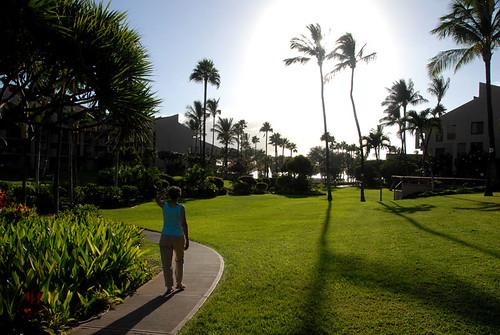 Maui 02