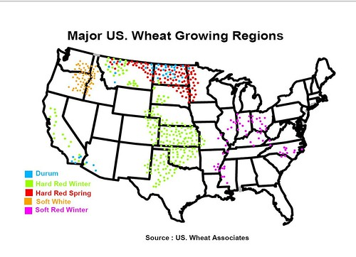 Major Wheat Growing Regions In The US Reference Maps The Fresh - Us wheat production map