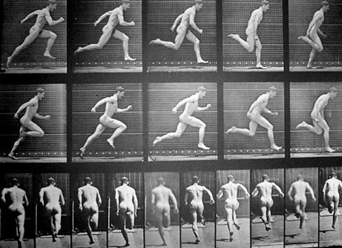 muybridge photo