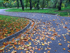 Autumnal Curves (NatashaP) Tags: park autumn fab fall leaves way nikon bravo hungary searchthebest bend path walk curves budapest explore lane footpath soe pathway dryleaves windingroad naturesfinest bigmomma blueribbonwinner d40 gellrthill supershot interestingness67 flickrsbest challengeyouwinner abigfave anawesomeshot impressedbeauty superaplus aplusphoto ultimateshot infinestyle goldenphotographer diamondclassphotographer photofaceoffwinner a3b theperfectphotographer thegardenofzen pfosilver thegoldendreams