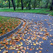 Autumnal Curves (by NatashaP)