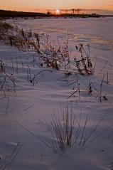 (baldwinm16) Tags: winter sunset snow cold ice frozen frigid springbrook springbrookprairie crookedslough illinoisforestpreserve springbrookprairieforestpreserve