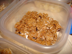 Raisin Bran Treats