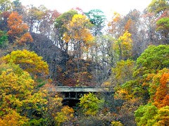 Henry Hudson Drive Bridge over Greenbrook Falls in Palisades Interstate Park (jag9889) Tags: 2005 bridge autumn green puente newjersey kayak crossing nj bridges ponte foliage kayaking pip pont hudsonriver brook brcke paddling greenbrook palisades bergencounty y2005 jag9889