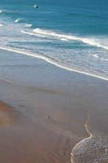 Cap Spartel between Atlantic ocean and Mediterreanen sea (luca.gargano) Tags: voyage travel sea seagull morocco maroc exploration viaggio gargano lucagargano
