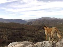 Hiking in Ramona, 2008-02-23