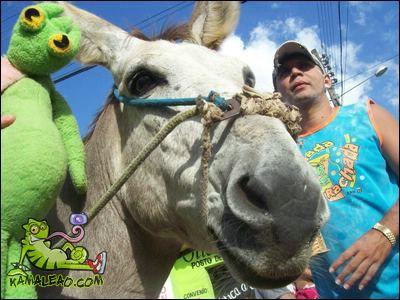http://farm3.static.flickr.com/2292/2344075491_211a12f78e_o.jpg