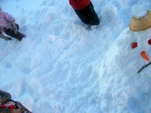 Snow monter