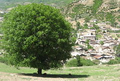 Ziarat Village (dayan.gh) Tags: village dayan     ziarat  upcoming:event=495732