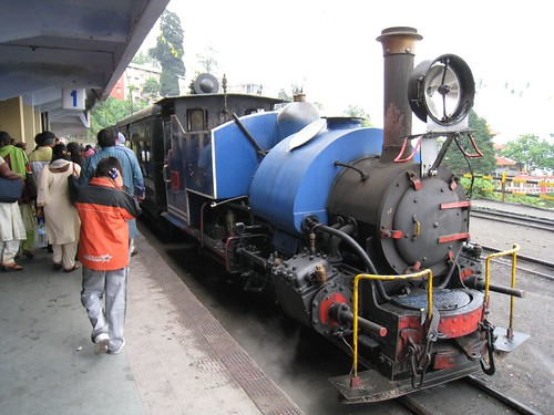 Darjeeling Himalayan