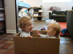 boys in box2