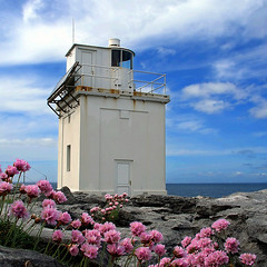 Black Head Lighthouse (idgie.) Tags: ocean pink flowers blue ireland sea sky lighthouse west rock stone clouds coast purple pavement atlantic casio blackhead limestone burren wildflowers solarpowered countyclare seathrift exp600 fanore seapinks platinumphoto life~asiseeit