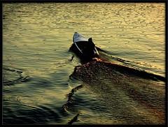 Towards the night (maurococi) Tags: sunset backlight river torino boat barca tramonto waves fiume po turin controluce onde abigfave