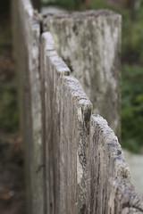 Fence ([ Kane ]) Tags: wood art fence lens australia qld kit kane 1855 gledhill agedwood kanegledhill humanhabits wwwhumanhabitscomau kanegledhillphotography