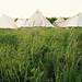camp by kat heyes